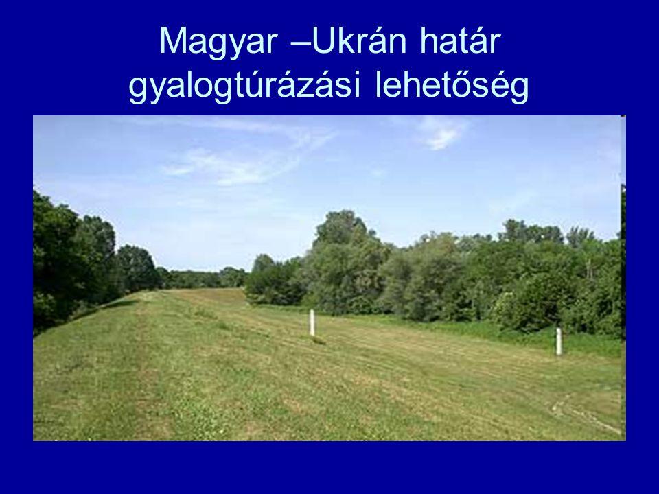 Magyar –Ukrán határ gyalogtúrázási lehetőség