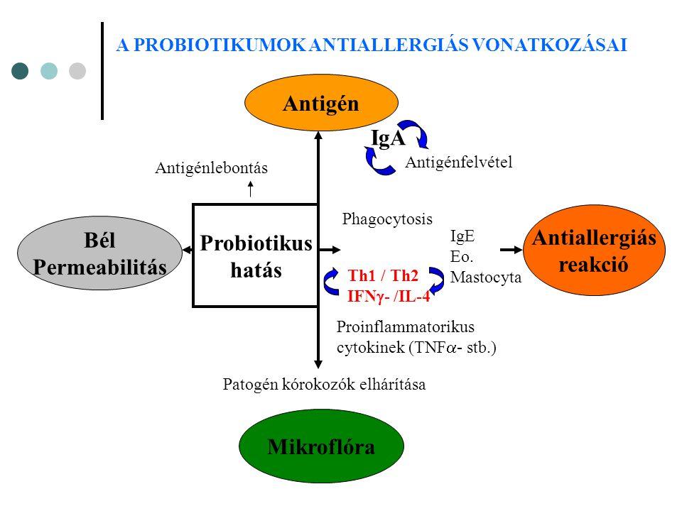 Antiallergiás reakció