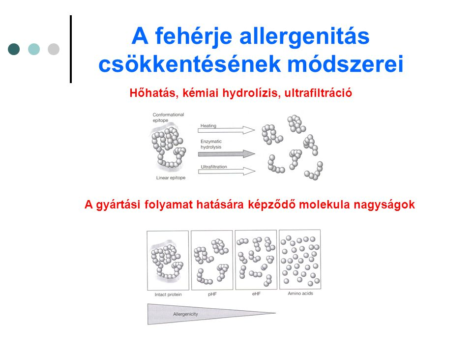 A fehérje allergenitás csökkentésének módszerei