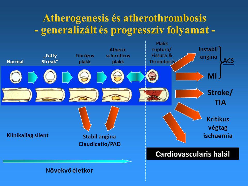 Atherogenesis és atherothrombosis - generalizált és progresszív folyamat -