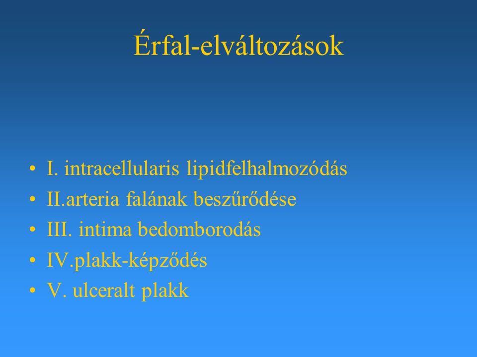 Érfal-elváltozások I. intracellularis lipidfelhalmozódás