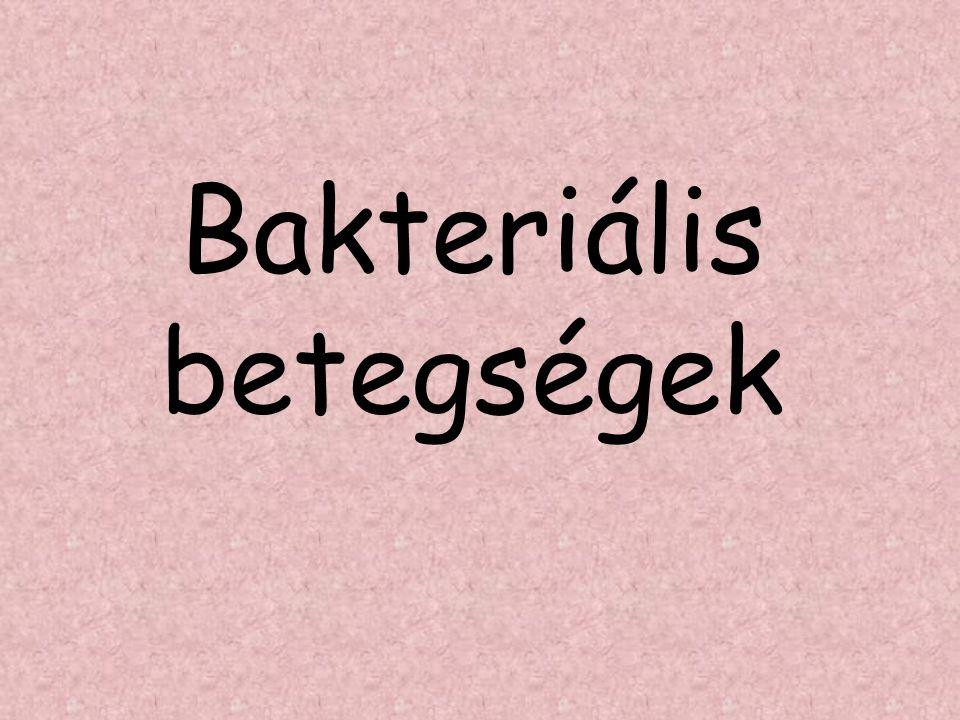Bakteriális betegségek