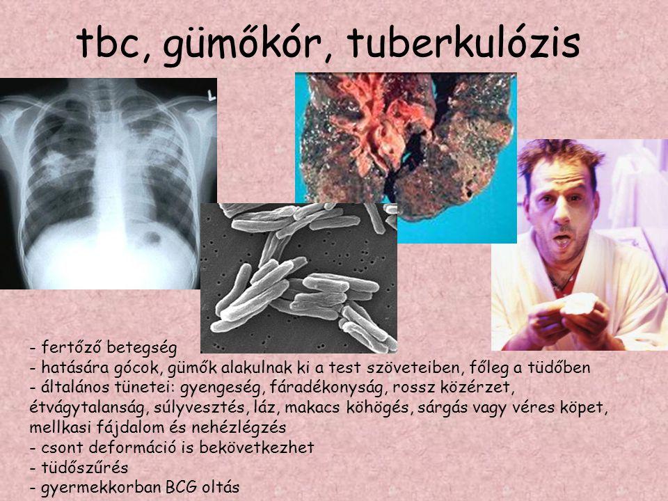 tbc, gümőkór, tuberkulózis