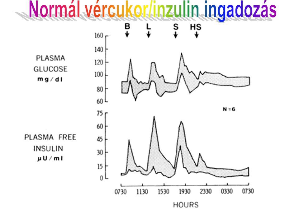 Normál vércukor/inzulin ingadozás