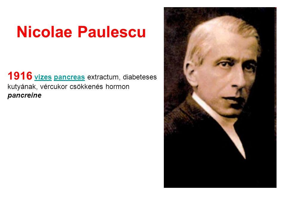 Nicolae Paulescu 1916 vizes pancreas extractum, diabeteses kutyának, vércukor csökkenés hormon pancreine.