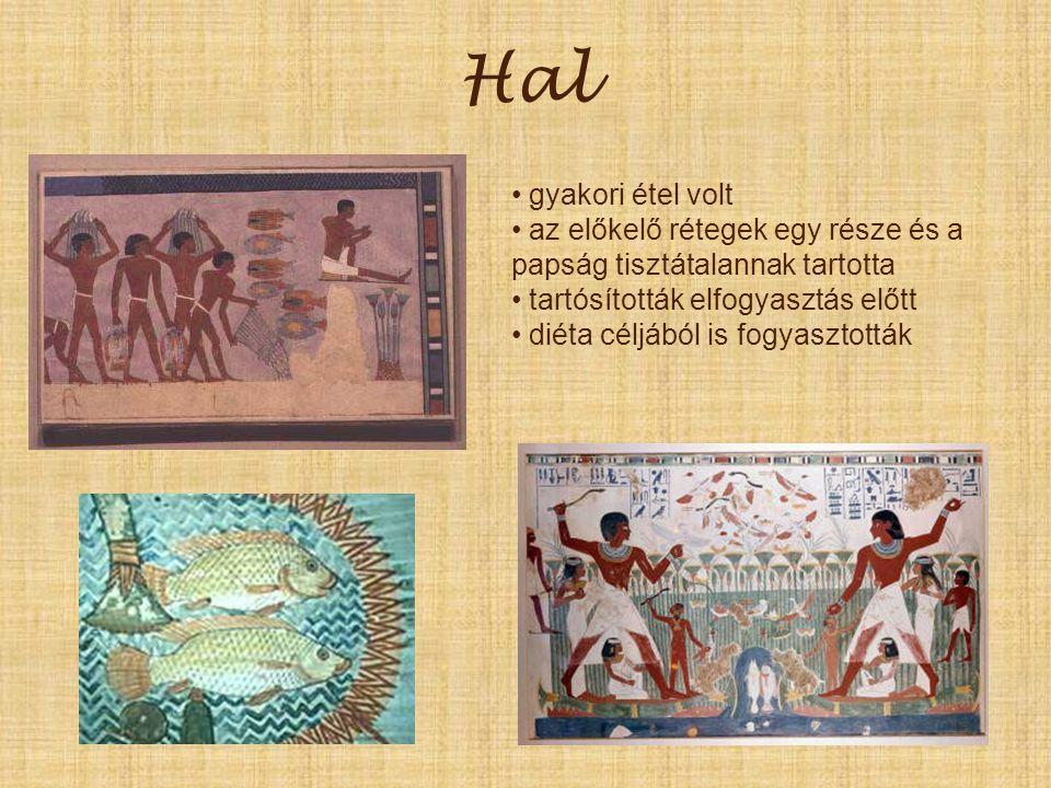 Hal gyakori étel volt. az előkelő rétegek egy része és a papság tisztátalannak tartotta. tartósították elfogyasztás előtt.