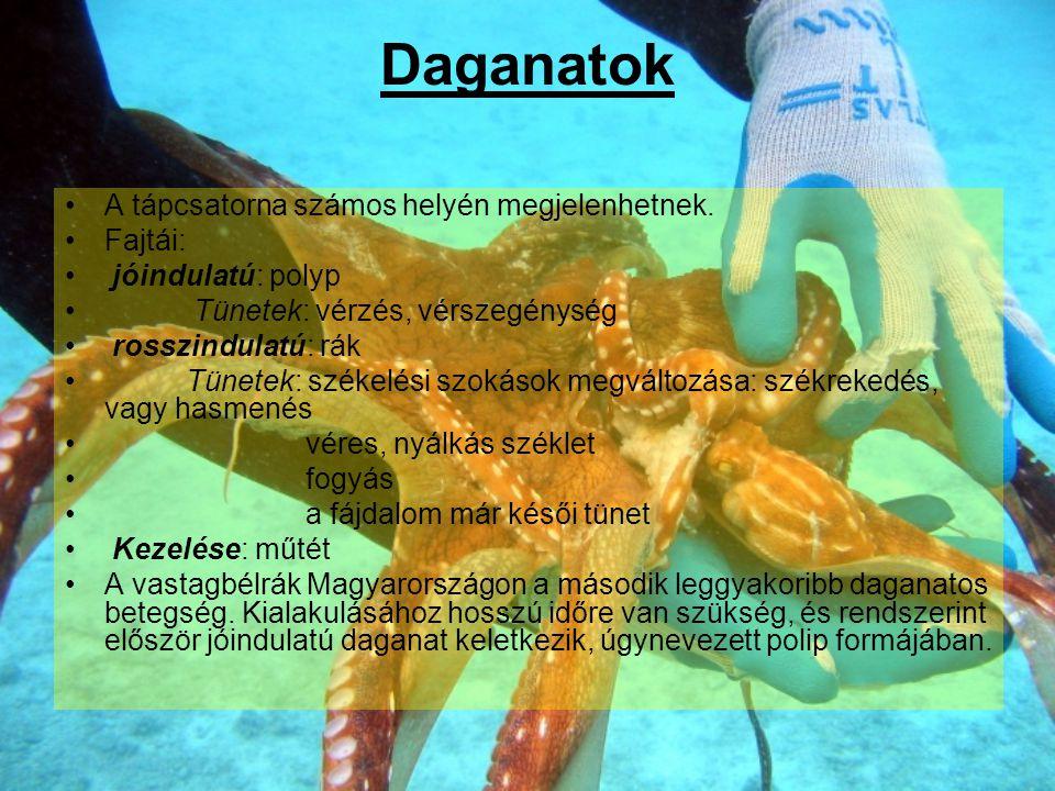 Daganatok A tápcsatorna számos helyén megjelenhetnek. Fajtái: