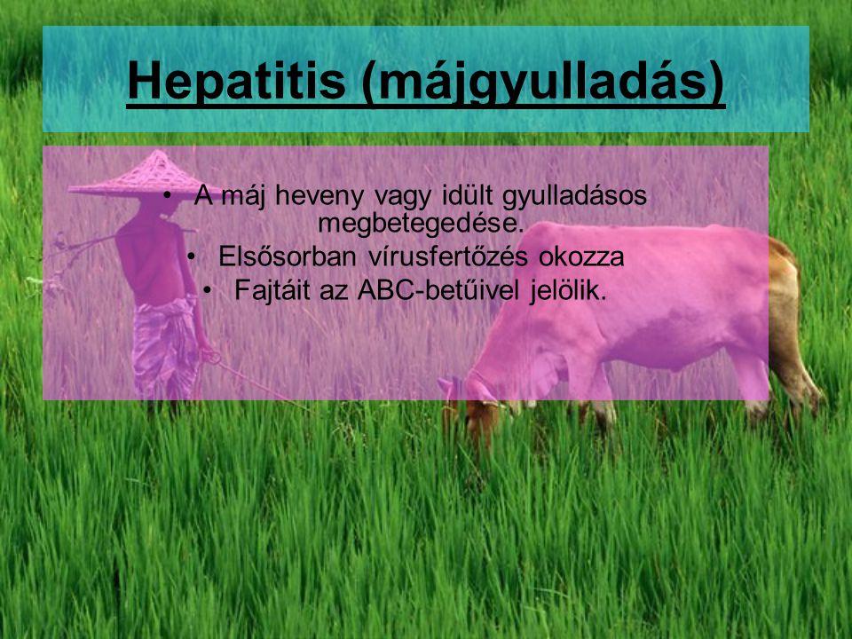 Hepatitis (májgyulladás)