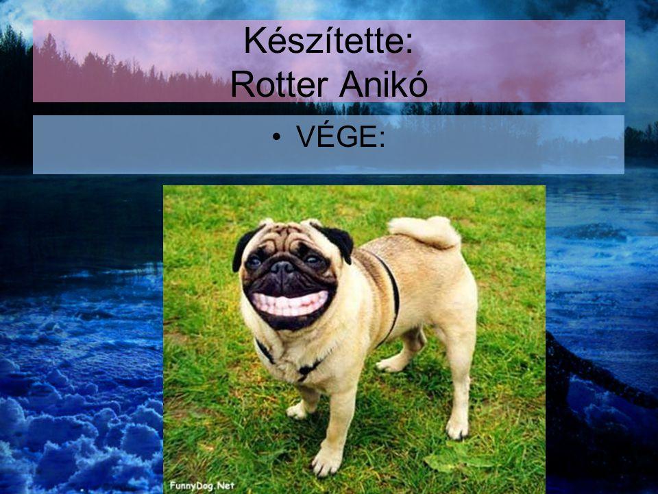Készítette: Rotter Anikó