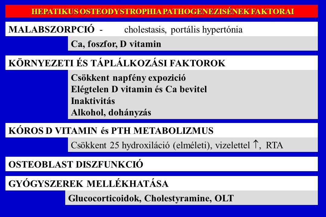 HEPATIKUS OSTEODYSTROPHIA PATHOGENEZISÉNEK FAKTORAI