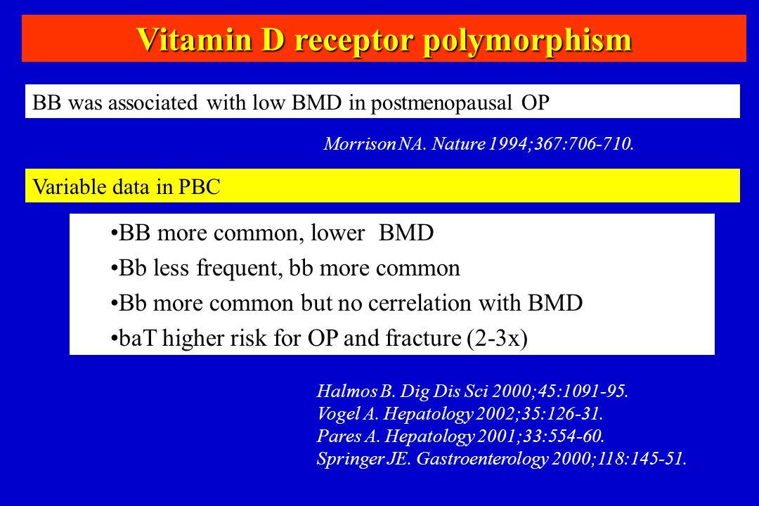 Vitamin D receptor polymorphism