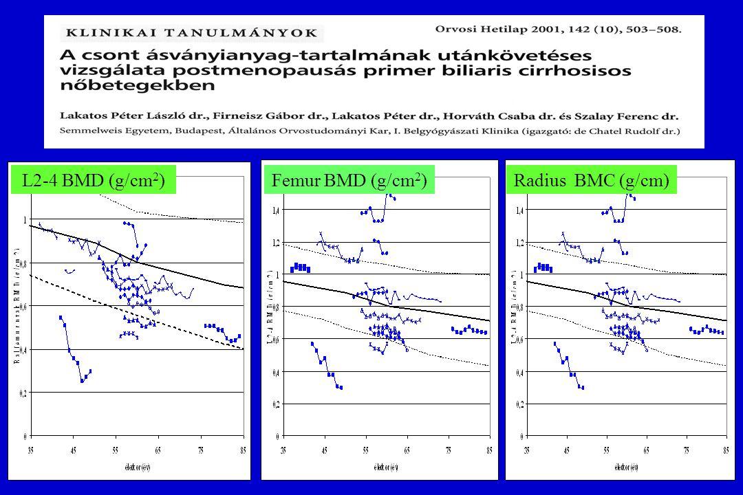 L2-4 BMD (g/cm2) Femur BMD (g/cm2) Radius BMC (g/cm)