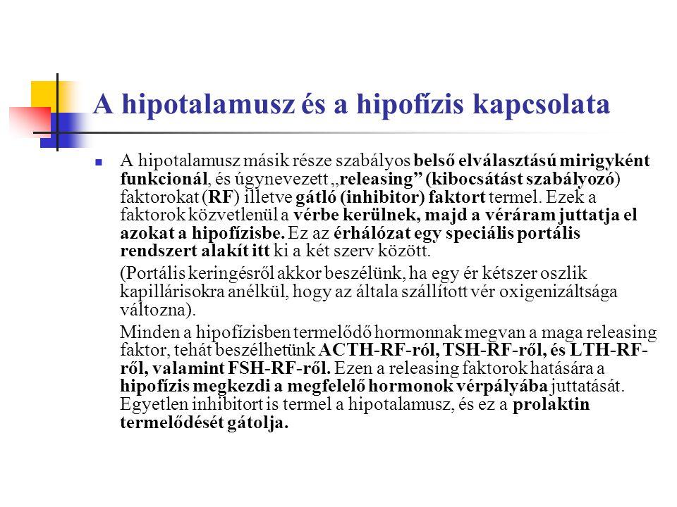 A hipotalamusz és a hipofízis kapcsolata