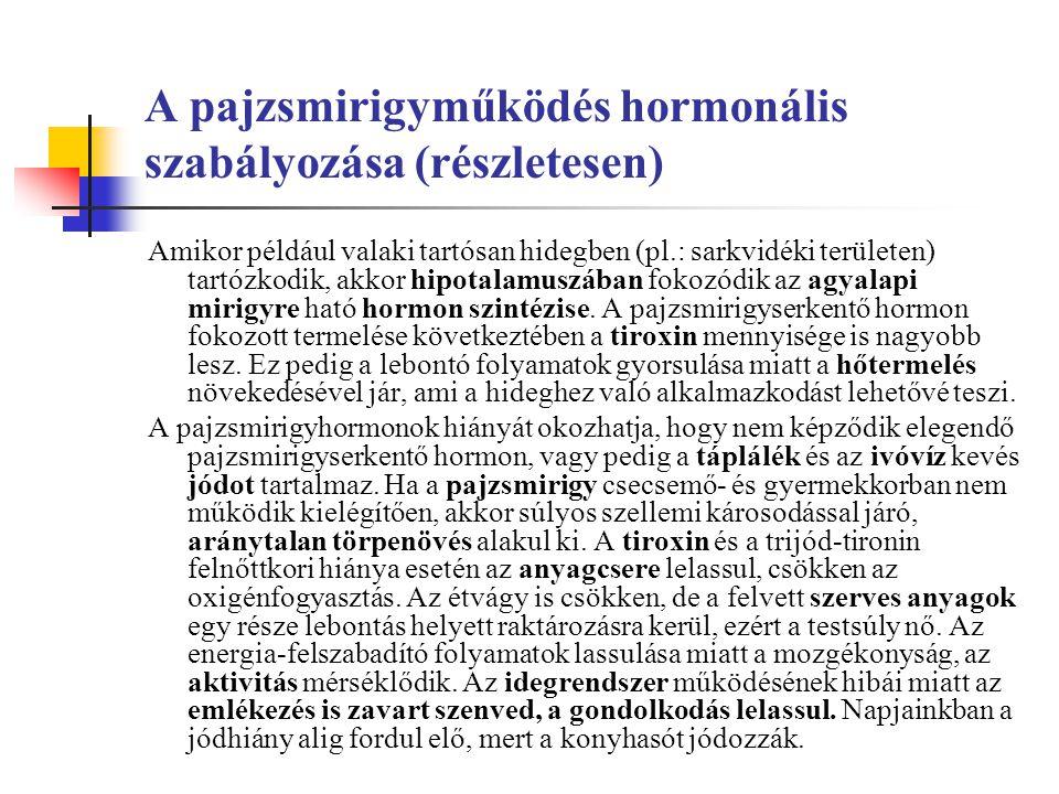 A pajzsmirigyműködés hormonális szabályozása (részletesen)