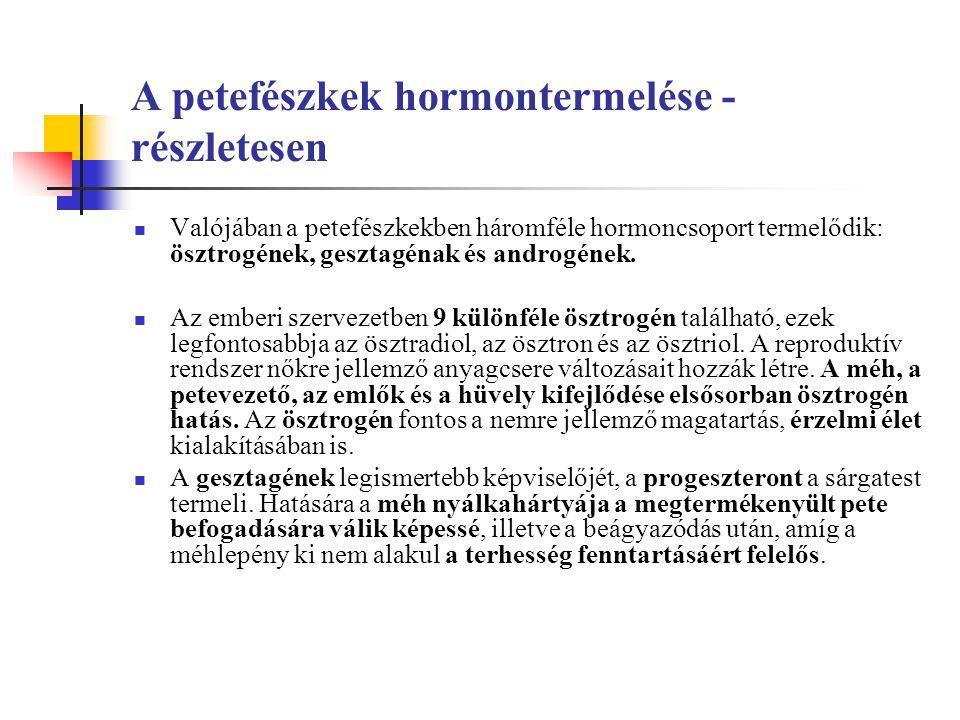 A petefészkek hormontermelése - részletesen