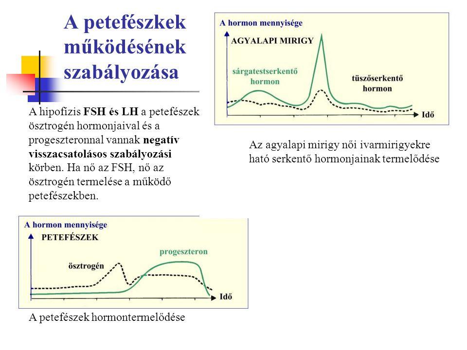 A petefészkek működésének szabályozása
