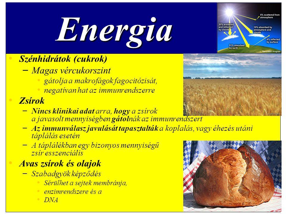 Energia Szénhidrátok (cukrok) Magas vércukorszint Zsírok