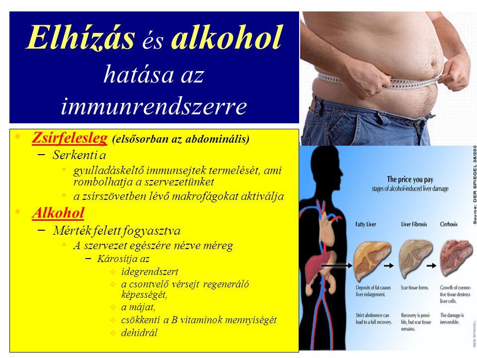 Elhízás és alkohol hatása az immunrendszerre