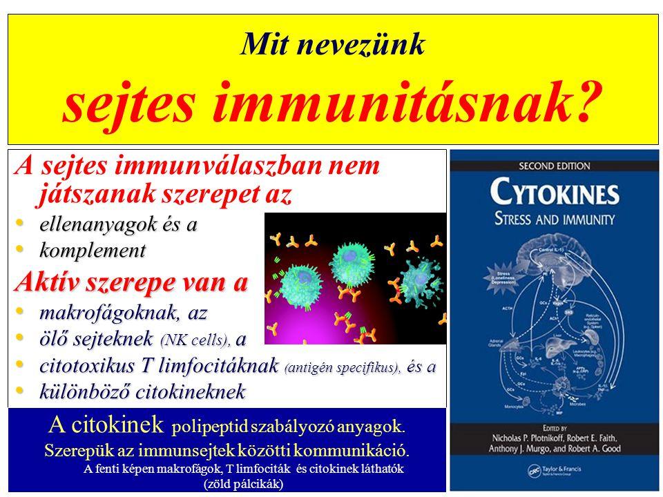 Mit nevezünk sejtes immunitásnak