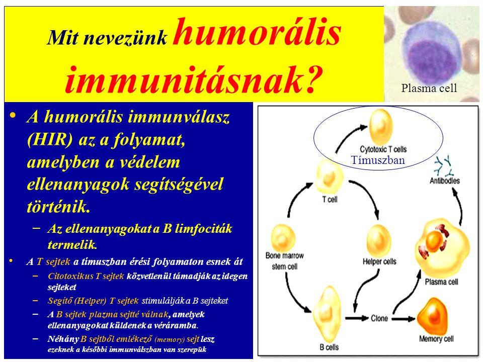Mit nevezünk humorális immunitásnak