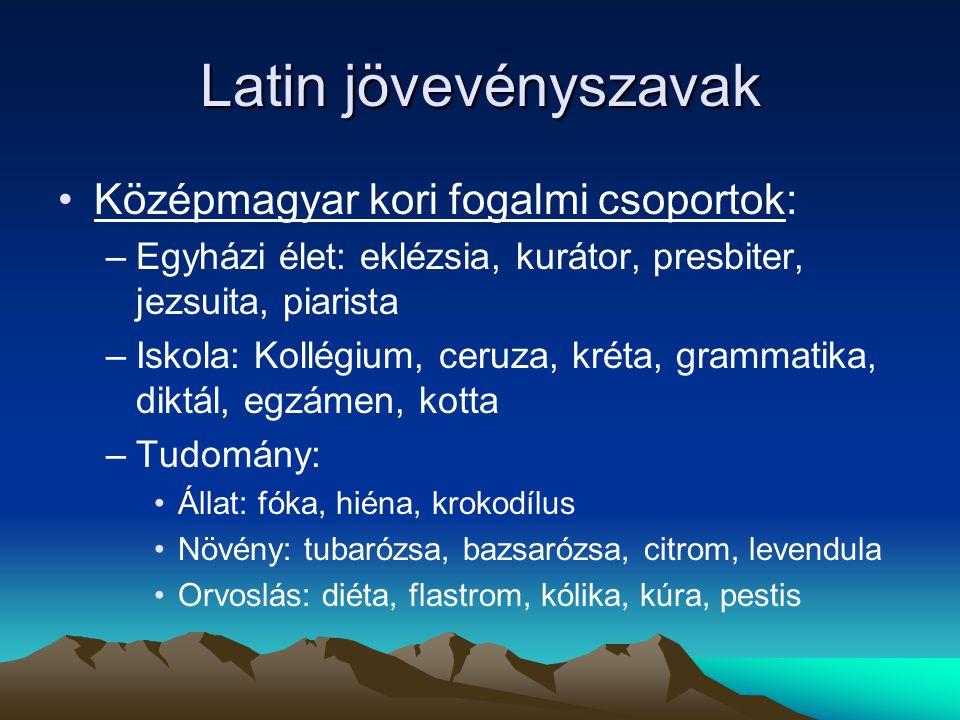 Latin jövevényszavak Középmagyar kori fogalmi csoportok: