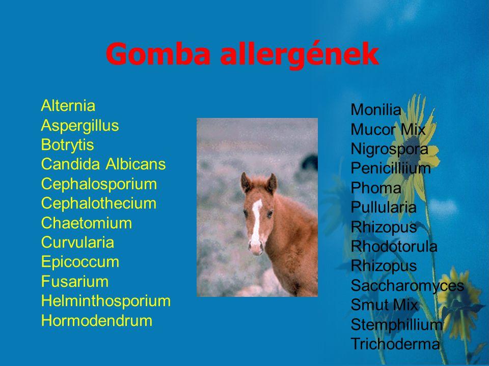 Gomba allergének Alternia Monilia Aspergillus Mucor Mix Botrytis
