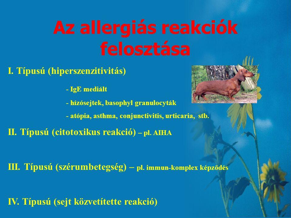 Az allergiás reakciók felosztása