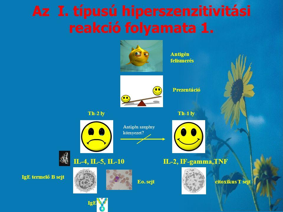Az I. típusú hiperszenzitivitási reakció folyamata 1.