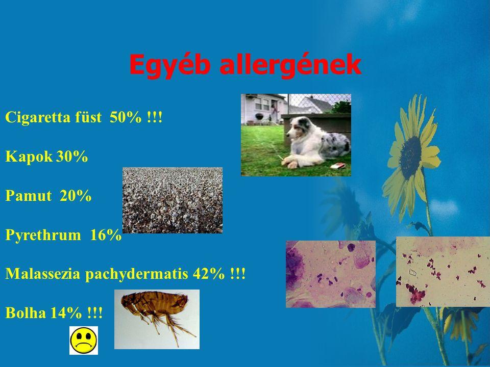 Egyéb allergének Cigaretta füst 50% !!! Kapok 30% Pamut 20%