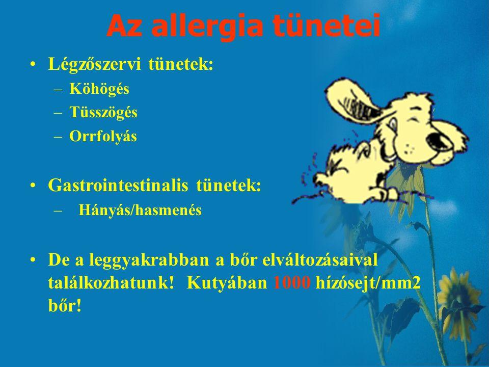 Az allergia tünetei Légzőszervi tünetek: Gastrointestinalis tünetek: