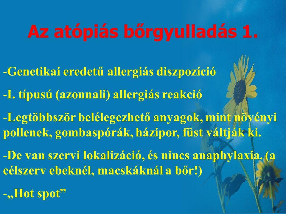 Az atópiás bőrgyulladás 1.