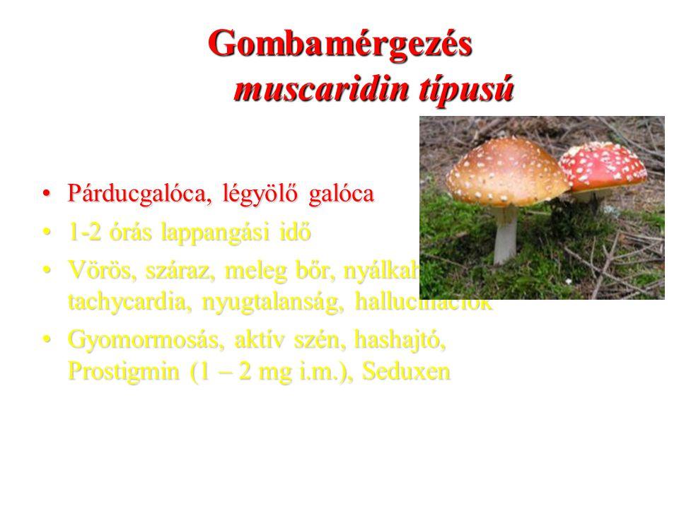Gombamérgezés muscaridin típusú