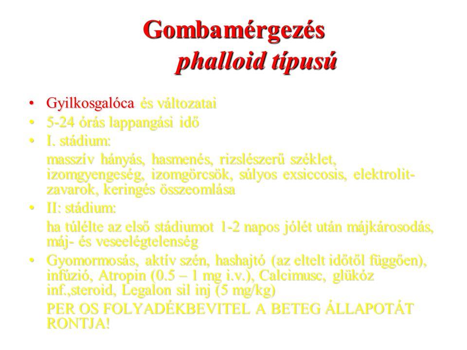 Gombamérgezés phalloid típusú