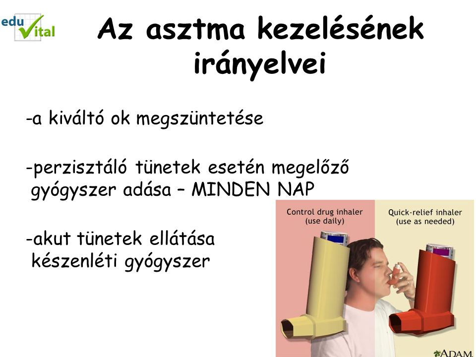 Az asztma kezelésének irányelvei