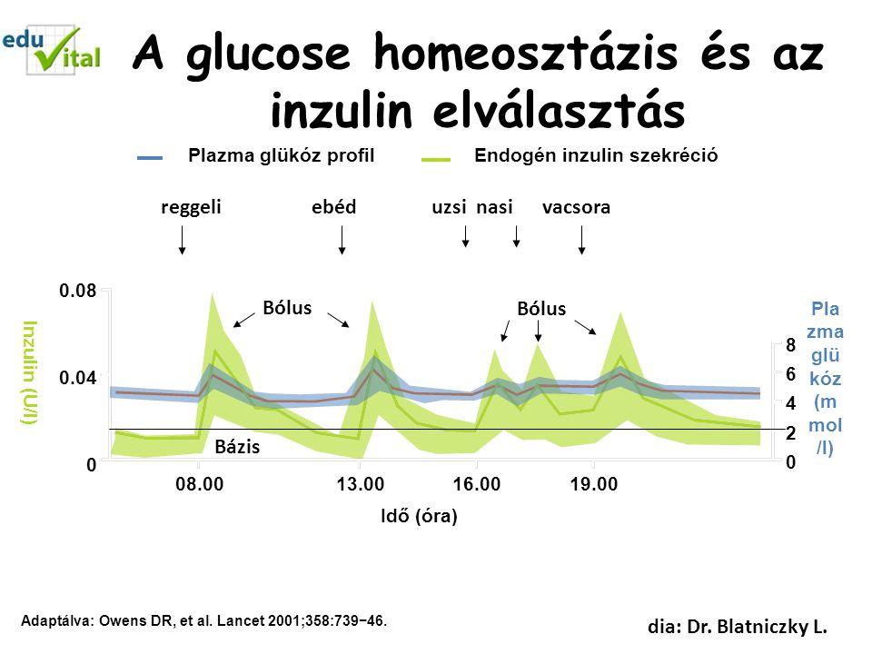 A glucose homeosztázis és az inzulin elválasztás
