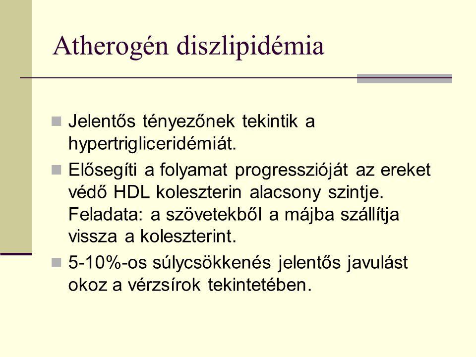 Atherogén diszlipidémia