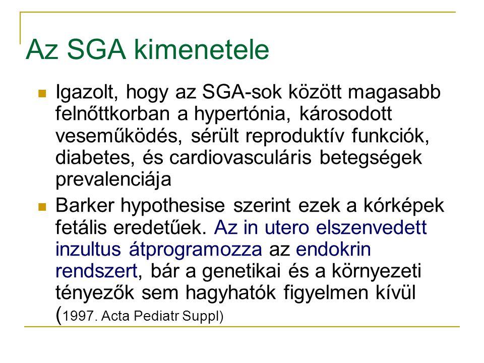 Az SGA kimenetele