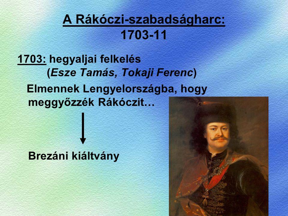 A Rákóczi-szabadságharc: 1703-11