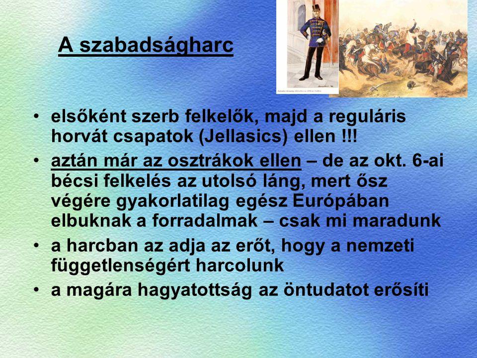 A szabadságharc elsőként szerb felkelők, majd a reguláris horvát csapatok (Jellasics) ellen !!!