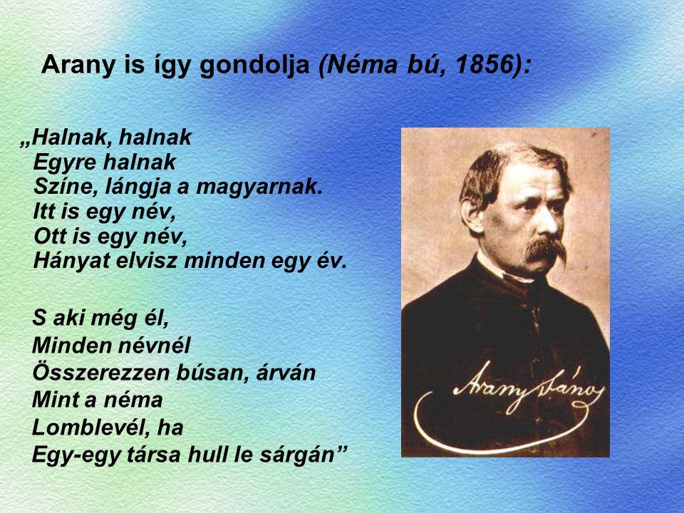 Arany is így gondolja (Néma bú, 1856):