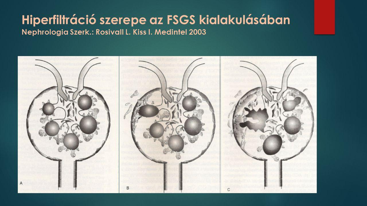 Hiperfiltráció szerepe az FSGS kialakulásában Nephrologia Szerk