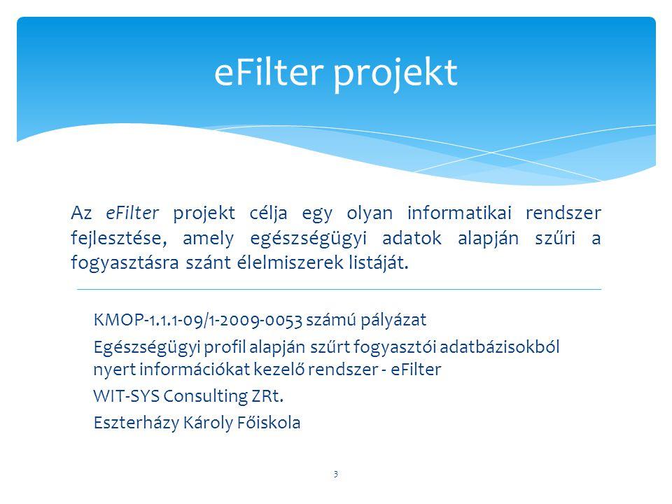 eFilter projekt