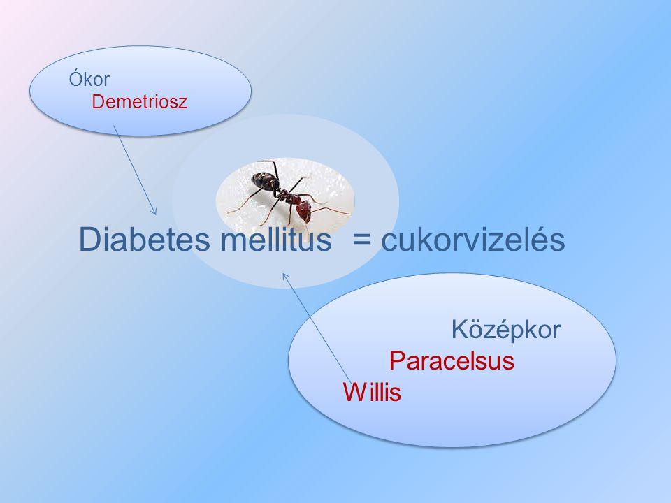 Diabetes mellitus = cukorvizelés
