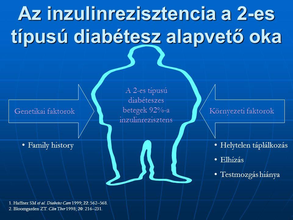 Az inzulinrezisztencia a 2-es típusú diabétesz alapvető oka