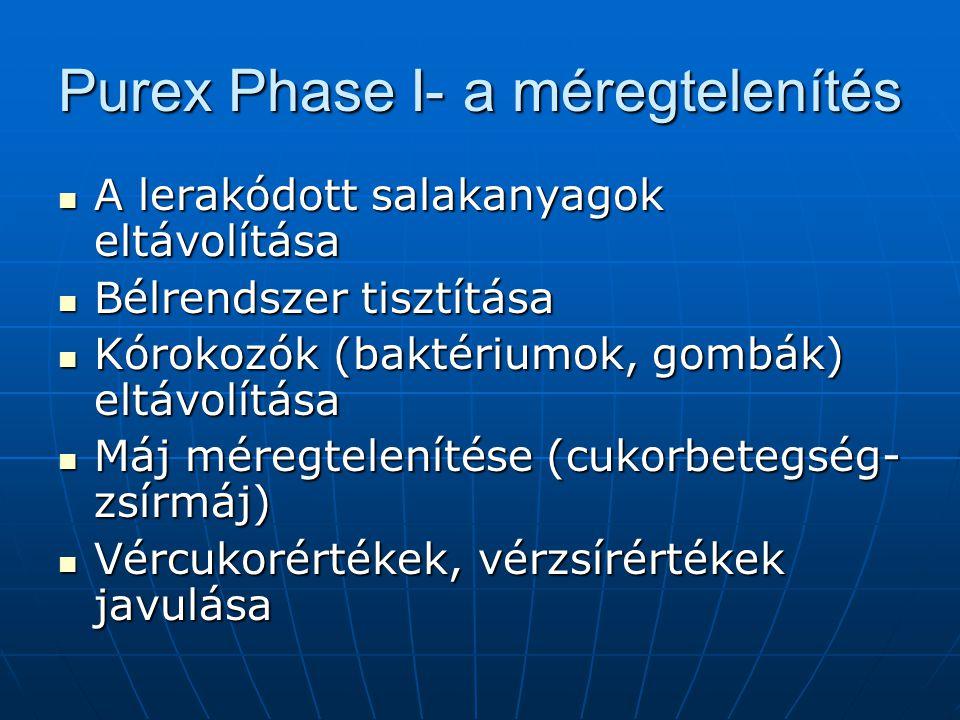 Purex Phase I- a méregtelenítés