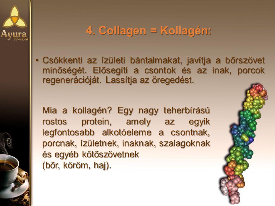 4. Collagen = Kollagén: