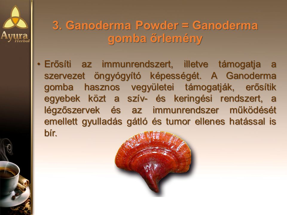 3. Ganoderma Powder = Ganoderma gomba őrlemény