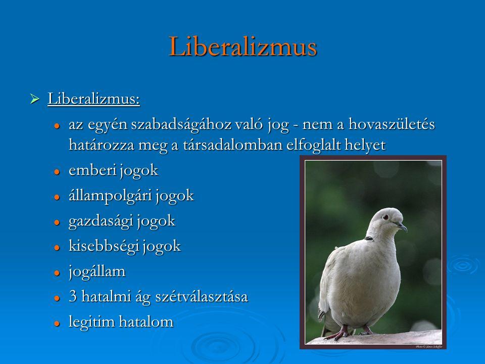 Liberalizmus Liberalizmus: