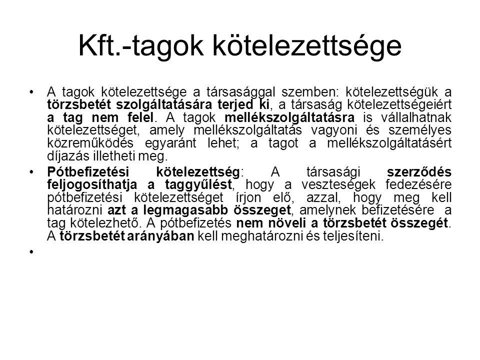 Kft.-tagok kötelezettsége