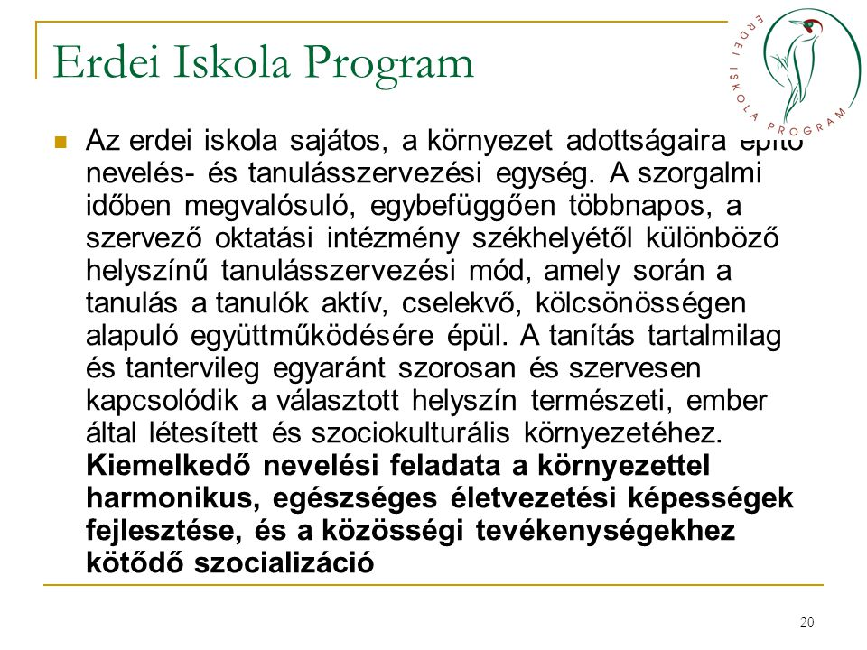Erdei Iskola Program